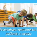 Физическая готовность ребенка к школе