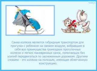 санки-коляски детские